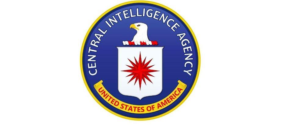 Central Intelligence Agency CIA Shutterstock cubart
