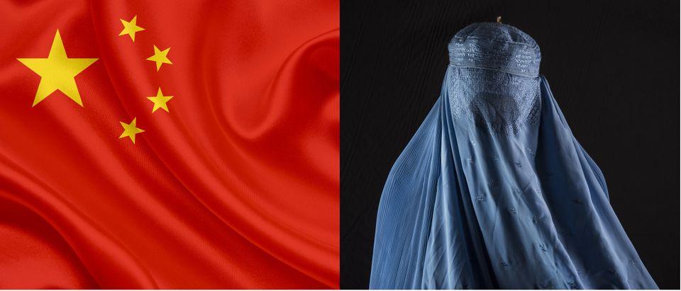 China and Afghanistan Shutterstock/Tony albelton, Shutterstock/Sergio Delle Vedove