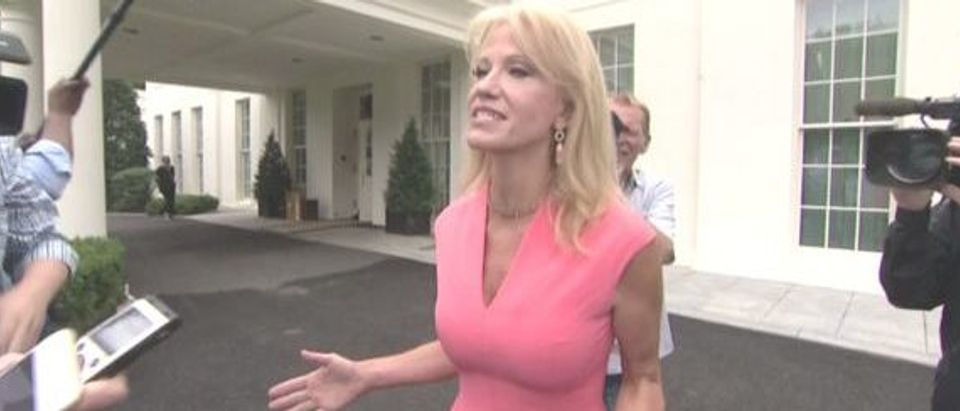Counselor to the president Kellyanne Conway was chased down by reporters on the White House driveway after a TV hit Tuesday morning. Mark Knoller/Twitter