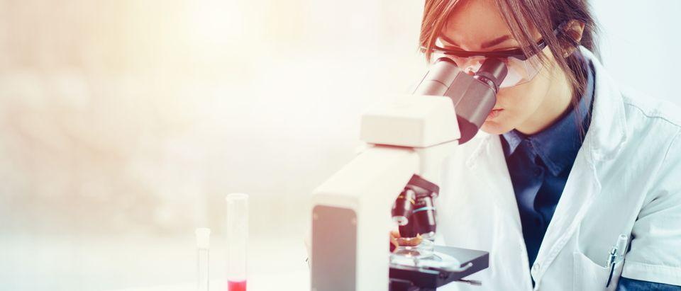Female scientist (Shutterstock/Likoper)