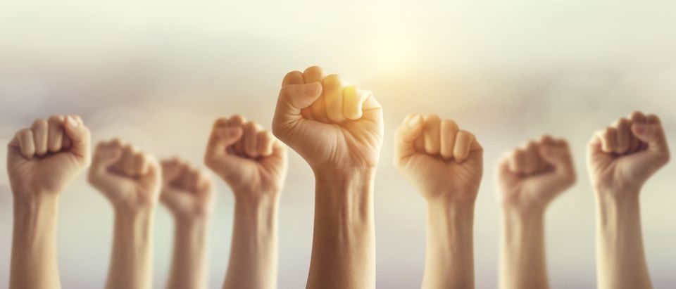 Fists raised into the air (Shutterstock/oatawa)