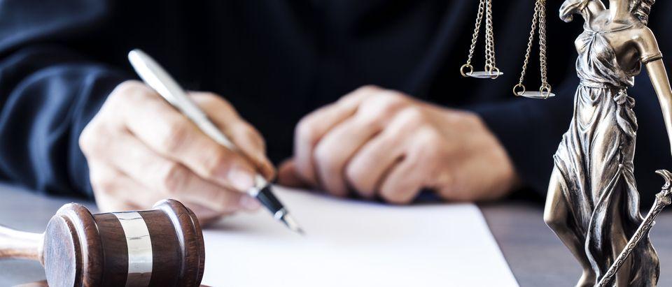 Judgepicture-Shutterstock