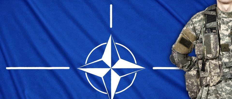 NATO Shutterstock/vetkit