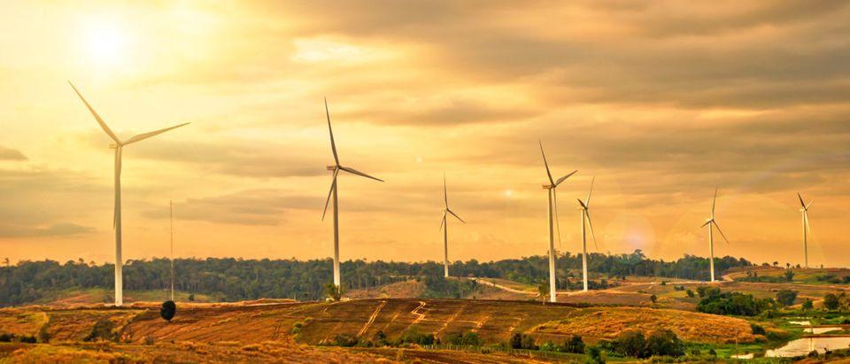 Oregon Renewables. Shutterstock