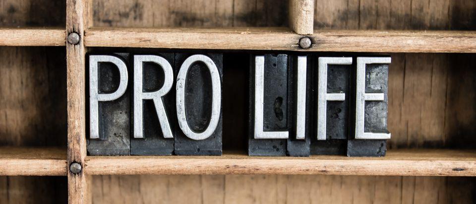 Pro-life letters (Shutterstock/enterlinedesign)
