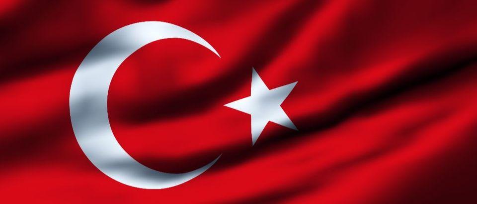Turkish flag Shutterstock/Filip Bjorkman