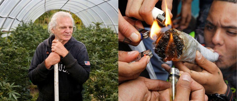 Legalize marijuana, Reuters/ By Terray Sylvester and Jaime Saldarriaga
