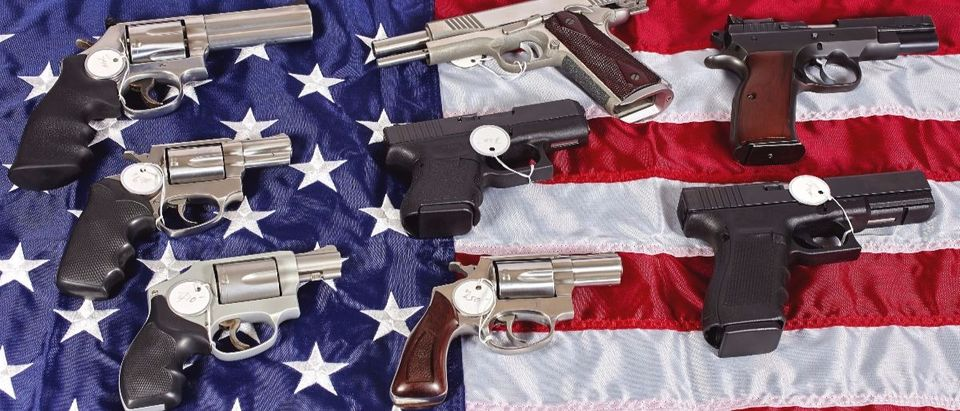 guns and flag Shutterstock/ja-images
