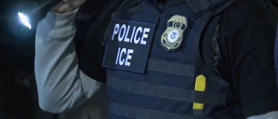 ICE enforcement (ICE.Gov Video Screenshot)