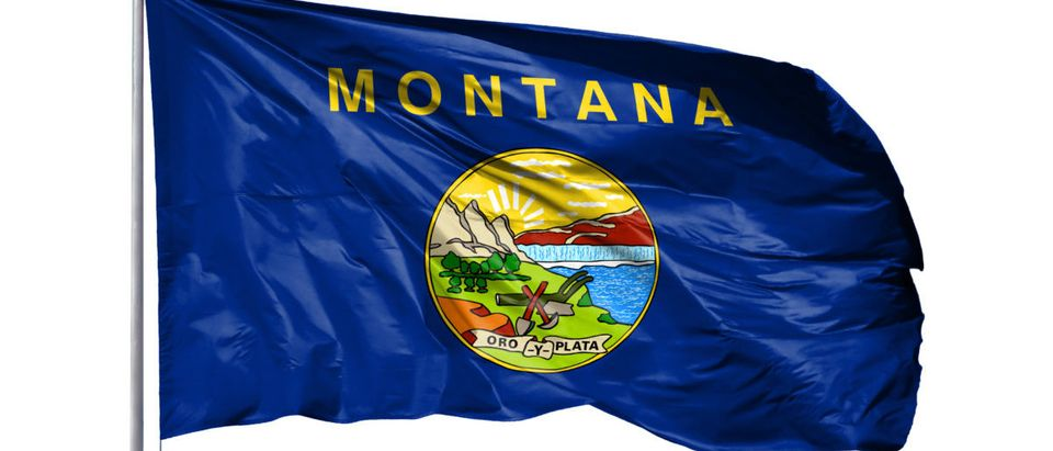 Flag of State of Montana on a flagpole, isolated on white background