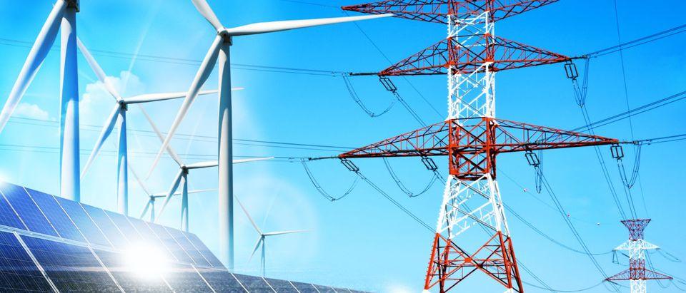 California Zero-Carbon Bill. Shutterstock