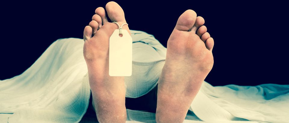 Pictured is a dead woman with a foot tag. (Shutterstock/andriano.cz)
