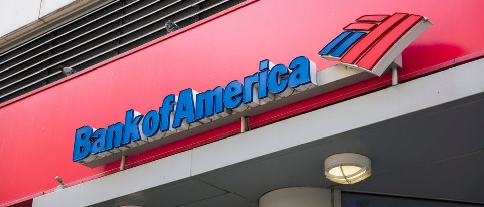 Bank of America is ranked 2nd on the list of largest banks in the U.S. by assets. ShutterStock Goran Bogicevic