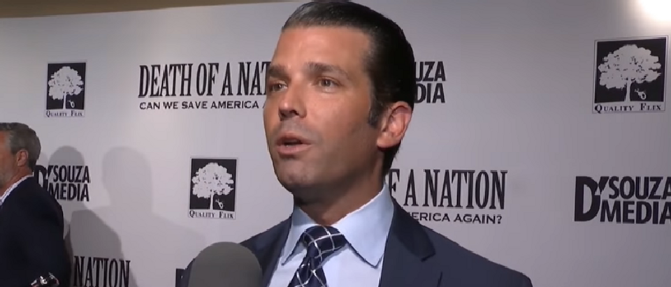 Donald Trump Jr. compares current DNC platform to 1930's Germany (screengrab)