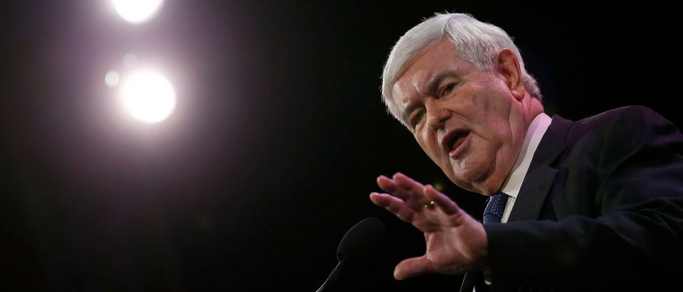 Former Speaker of the House Newt Gingrich speaks at the Freedom Summit in Des Moines, Iowa, January 24, 2015. REUTERS/Jim Young