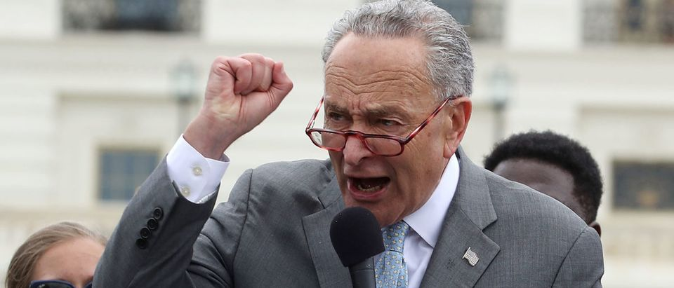Senate Minority Leader Charles Schumer (D-NY) joins activist groups in speaking out against Supreme Court nominee Brett Kavanaugh, at the U.S. Capitol on August 1, 2018 in Washington, DC. Mark Wilson/Getty Images
