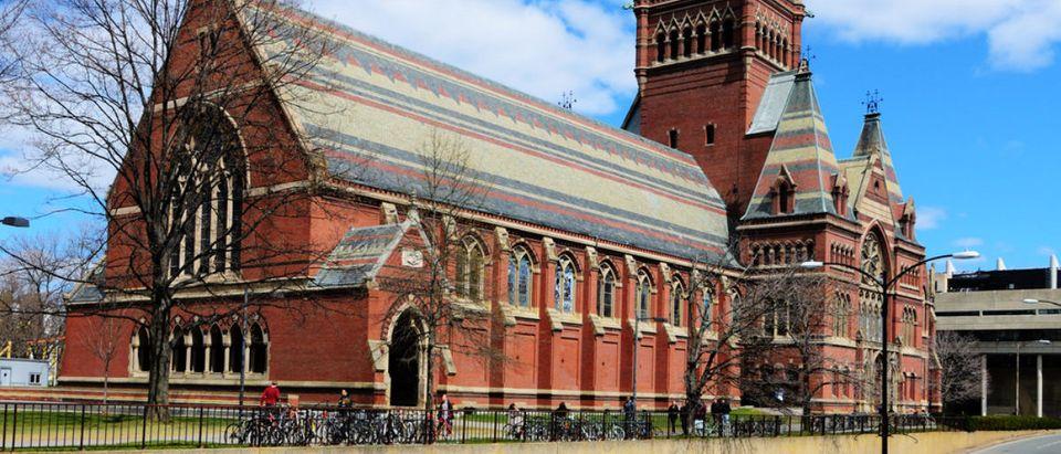 Harvard_University_6