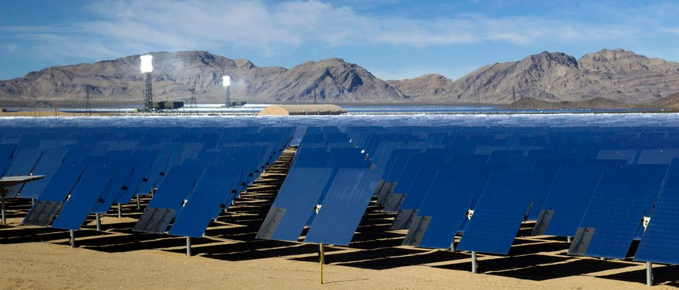 Heliostats are shown during a tour of the Ivanpah Solar Electric Generating System in the Mojave Desert near the California-Nevada border