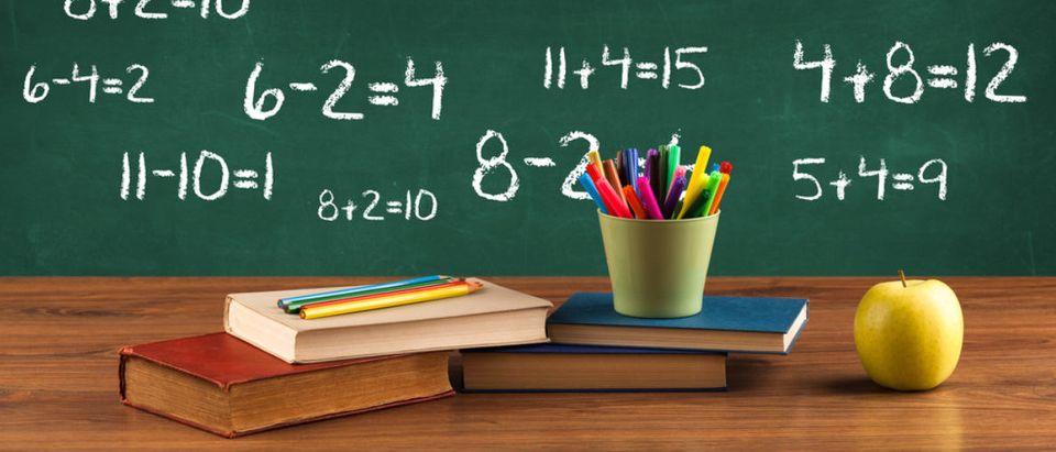 Math is featured on a chalkboard. (Shutterstock/ra2studio)