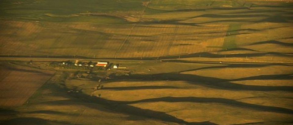 US-ECONOMY-FARMS