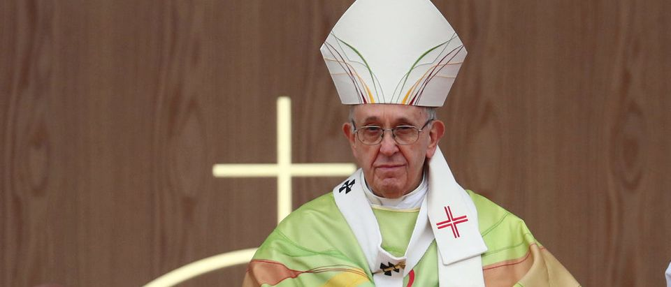 Pope Francis leads the World Meeting of Families closing mass in Phoenix Park
