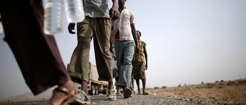 Ethiopian migrants walk on the side of a highway leading to the western Yemeni town of Haradh on the border with Saudi Arabia