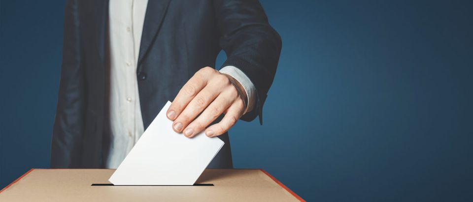 More than 3,000 foreign nationals were listed on voter rolls across 13 sanctuary jurisdictions, according to Public Interest Legal Foundation research released Monday.[Shutterstock/Sergey Tinyakov]