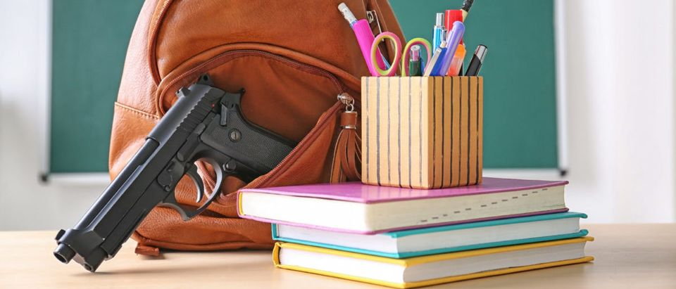 A report warns that Los Angeles schools were not adequately meeting school safety measures, despite having tough gun laws.