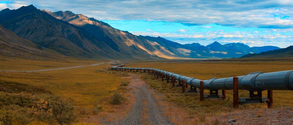 Trans Alaskan pipeline, Shutetrstock/