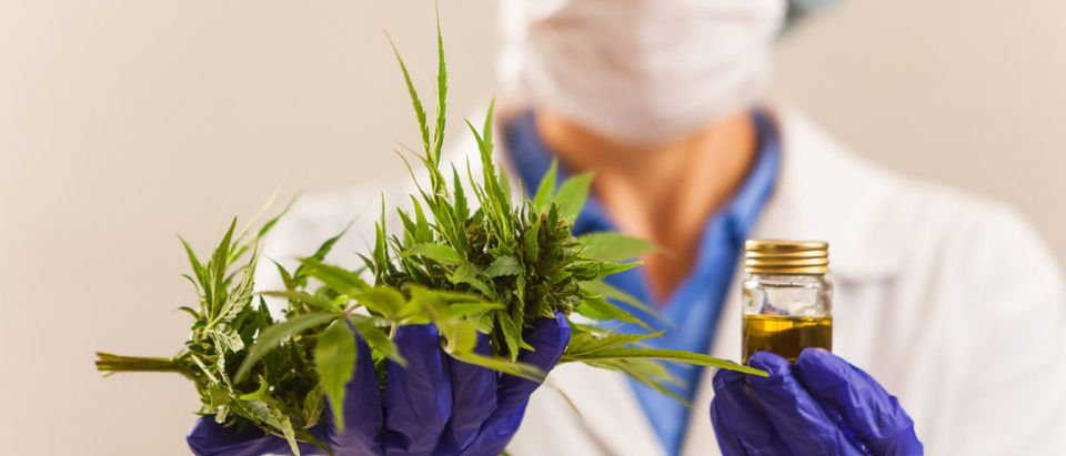A California judge ruled that a kindergartener can use a cannabis-based medicine in school.