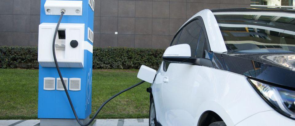 Electric Car Regulation. Shutterstock