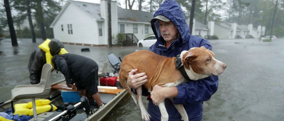 NEW BERN, NC - SEPTEMBER 14: Volunteers from all over North Carolina help rescue residents and their pets from their flooded homes during Hurricane Florence September 14, 2018 in New Bern, North Carolina. Hurricane Florence made landfall in North Carolina as a Category 1 storm and flooding from the heavy rain is forcing hundreds of people to call for emergency rescues in the area around New Bern, North Carolina, which sits at the confluence of the Nuese and Trent rivers. (Photo by Chip Somodevilla/Getty Images)