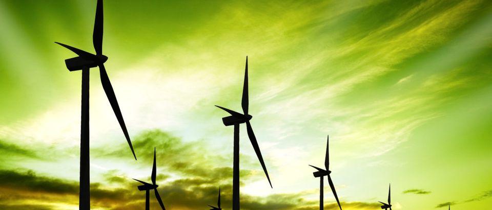 Minnesota Windmills