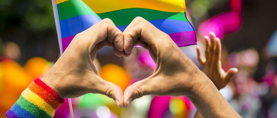 Pride parade (Shutterstock/lazyllama)