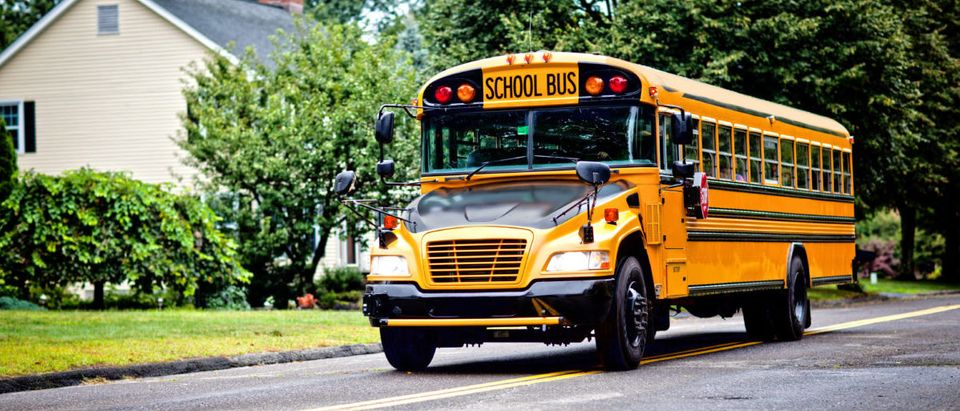 A bus driver in Indiana allegedly let children drive a school bus.