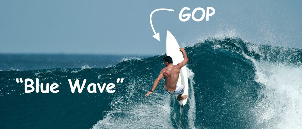 OPINION: Anatomy of a 'Shocking' GOP Victory in a 'Blue Wave'/ Shutterstock