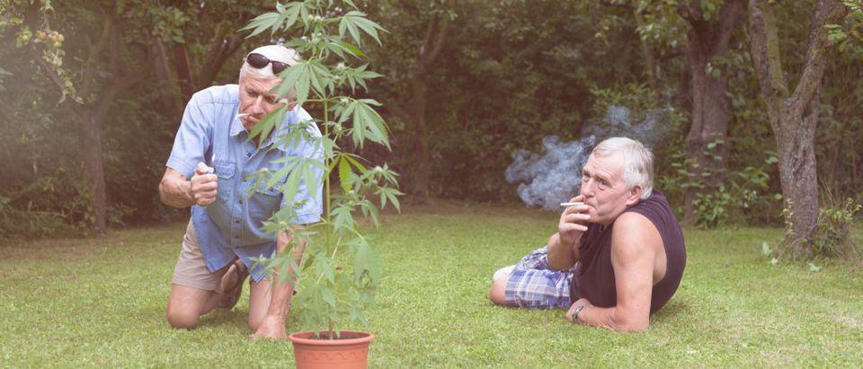 Two men smoke marijuana. Shutterstock image via user Jan Mika