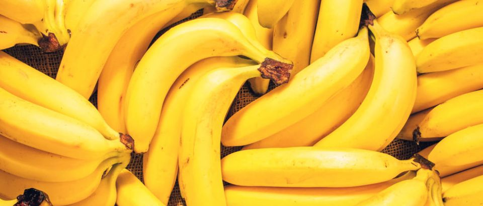 Pictured are bananas. shutterstock_518328943