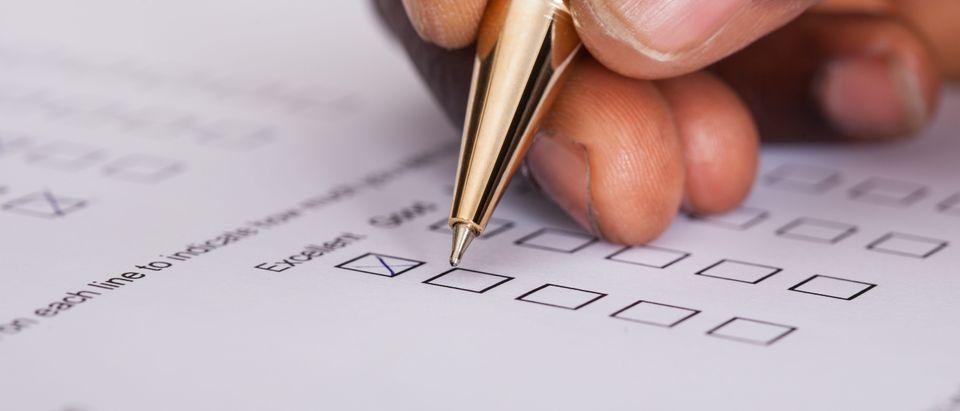 Business survey