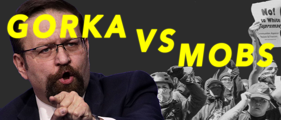 Gorka vs Mobs (TheDC YouTube)