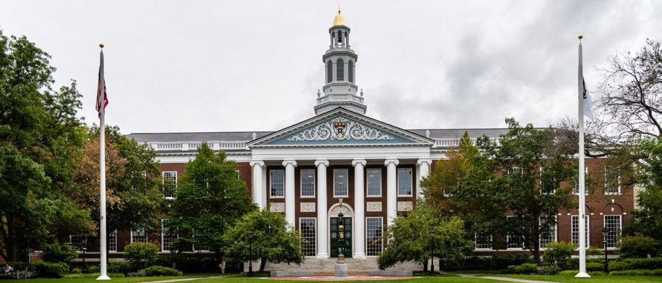 Elite business schools faced drops in MBA applications.