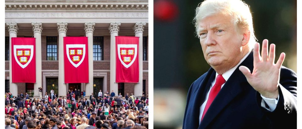 A Harvard Law course is aiming to push back against President Donald Trump's politics.
