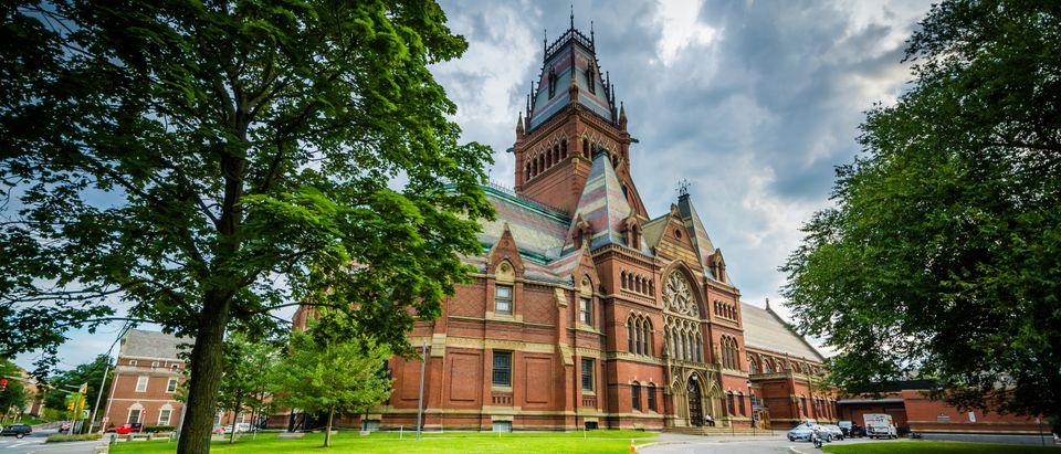 Harvard University Lawn