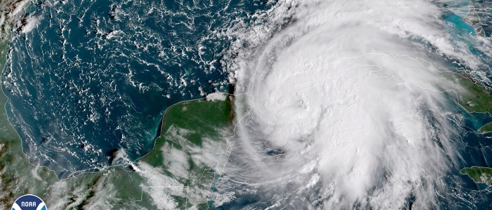 Tropical Storm Michael is seen in the Gulf of Mexico in this NOAA GOES-East satellite image taken October 8, 2018. Courtesy NOAA GOES-East/Handout via REUTERS ATTENTION EDITORS - THIS IMAGE WAS PROVIDED BY A THIRD PARTY