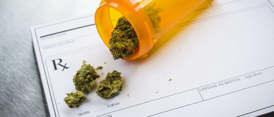 Pictured is medical marijuana. (Shutterstock/ Brian Goodman)