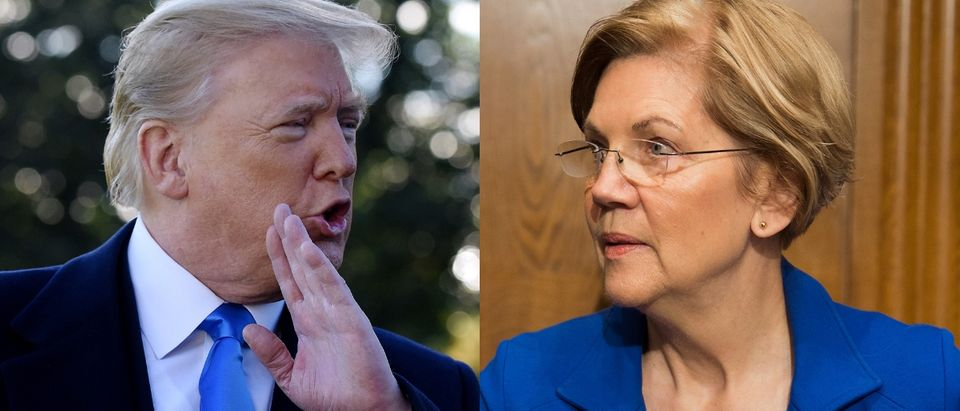 President Donald Trump (left) could face Democrat Elizabeth Warren (right) in the 2020 presidential election. Olivier Douliery - Pool/Getty Images and Tasos Katopodis/Getty Images