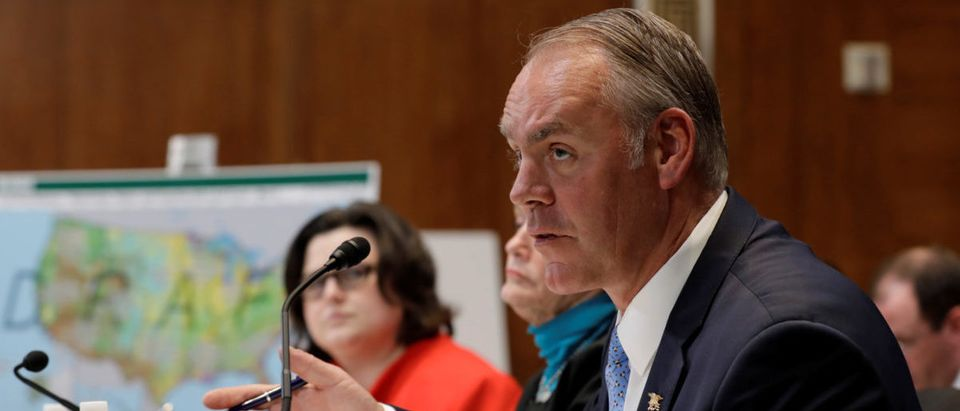U.S. Interior Secretary Ryan Zinke testifies before a Senate Appropriations Interior, Environment, and Related Agencies Subcommittee hearing in Washington