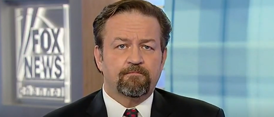 Sebastian Gorka on Democrat violence and fake news (Fox News screengrab)