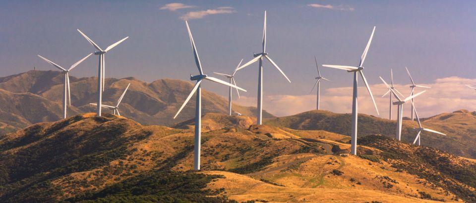Wind Energy Study. Shutterstock