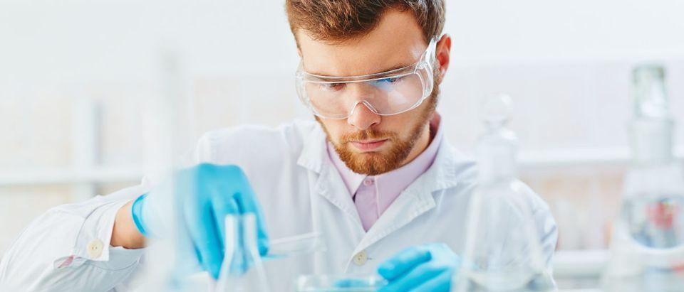 A lab technician experiments in the laboratory. Shutterstock image via user Pressmaster